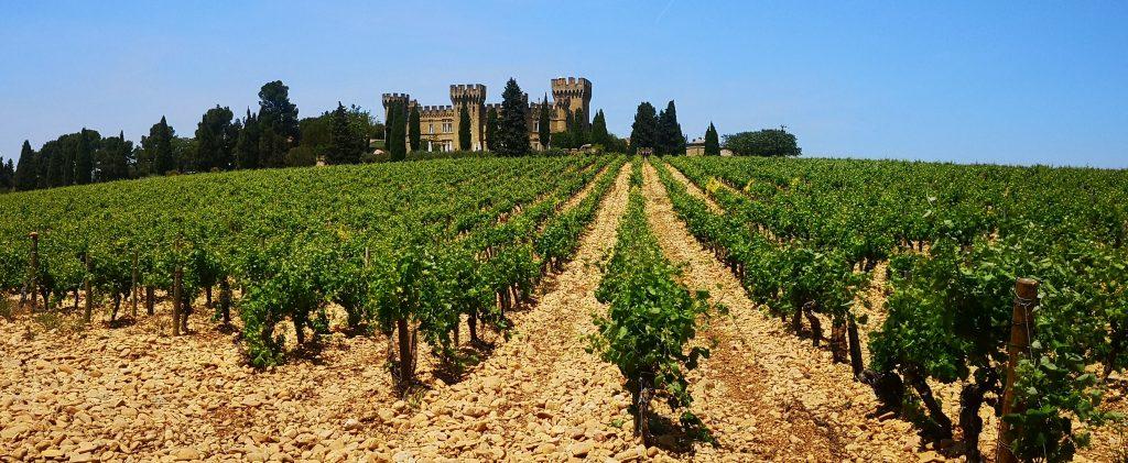 L'Hostellerie du Château des Fines Roches surplombe le vignoble de Châteauneuf