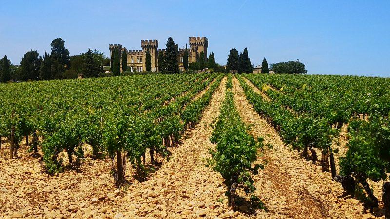 La Vallée du Rhône, un vignoble bicéphale