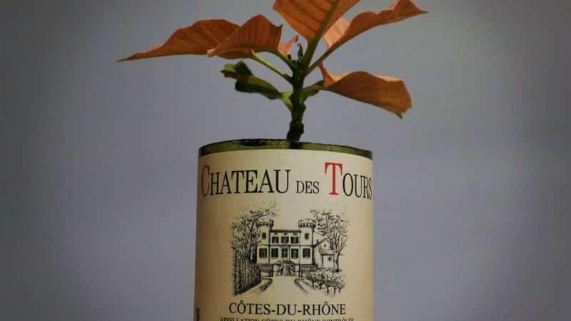 10 idées cadeaux originales pour amateurs de vin