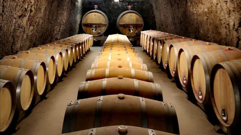 Tout savoir sur… Les vins de l'AOC Touraine